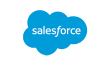 Fast Data Ingestion For Salesforce